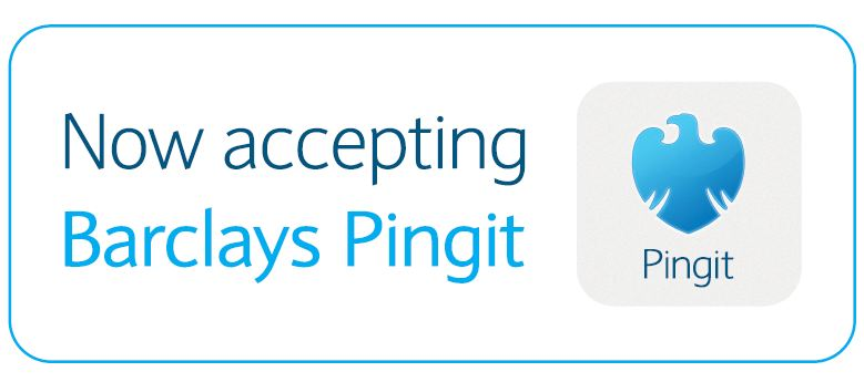 Pay Via Pingit